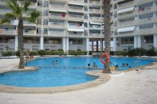 Apartment with swimming pool in Manga del Mar Menor