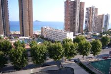 Apartment in Benidorm for 6 people with 2 rooms