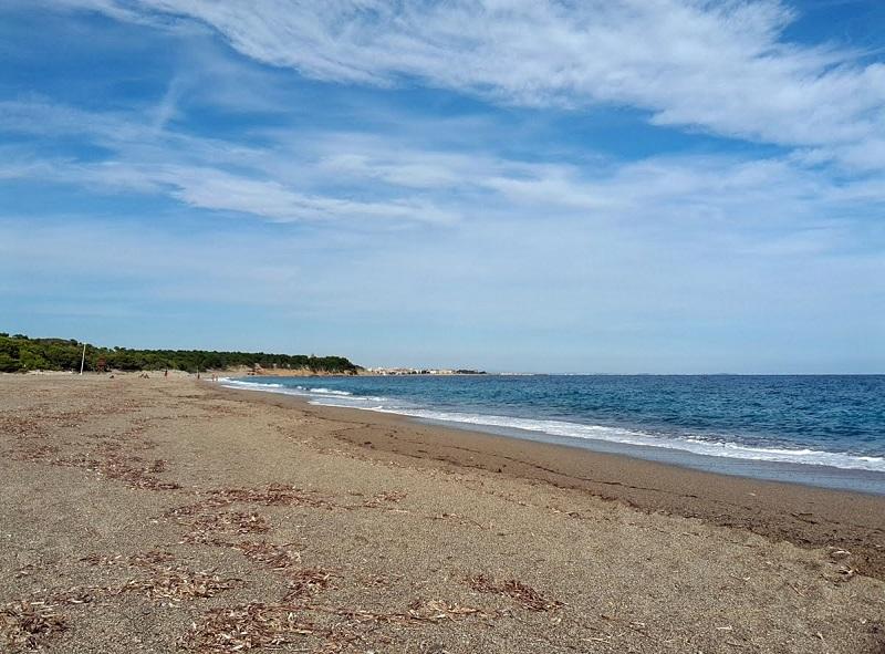 El Torn Beach Hospitalet Infant nudist beaches in spain