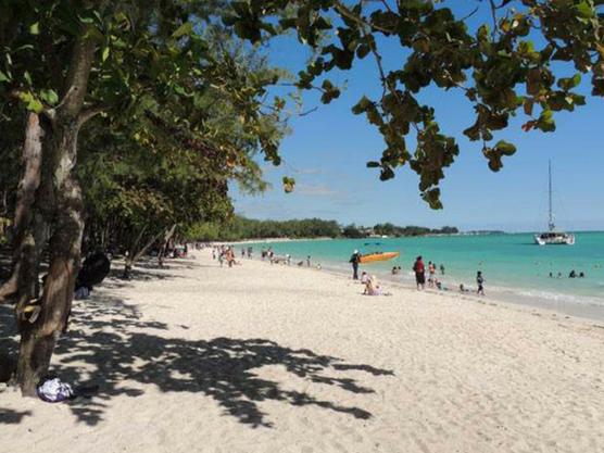 Island-Mauritius-Mont-choisy-beach