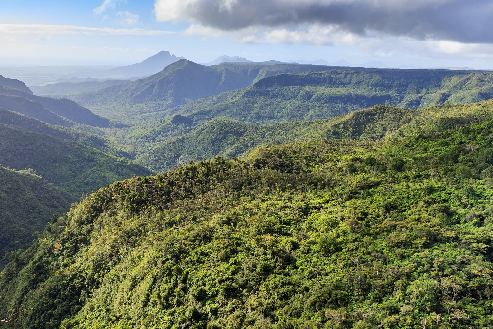 Island-Mauritius_Black-River-Gorges-National-Park