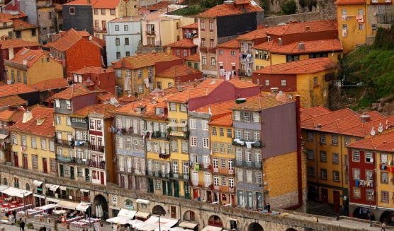 things to do in porto ribeira district