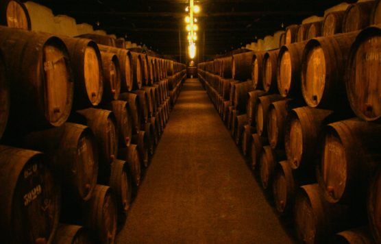 winery things to do in porto
