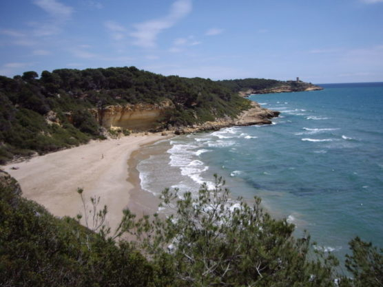 Coves-of-Tarragona-waikiki-muchosol