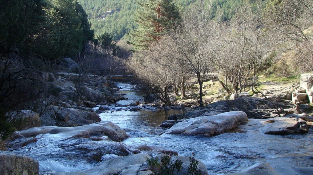 Nationa-Park-Guadarrama-nature