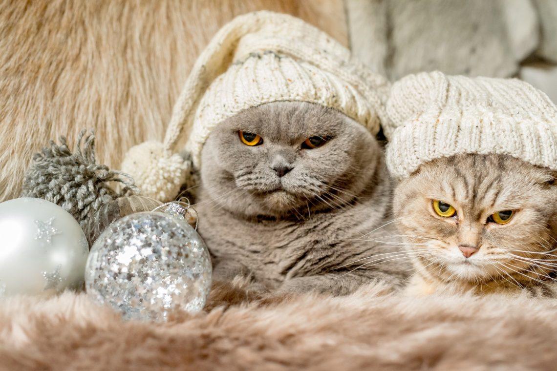 Christmas situations