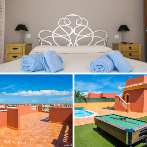 pet friendly accommodations in the Canary Islands